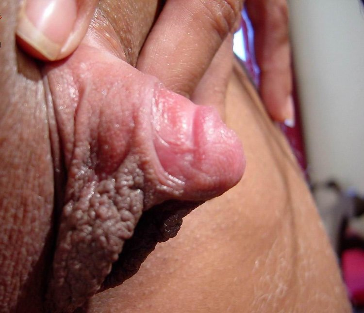 Yajaira recommends Huge cock in pussy pics